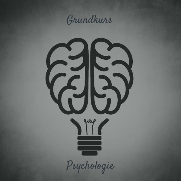 Grundkurs-Psychologie-Online-Marketing
